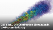 GET FIRED UP! Combustion Simulation in the Process Industry