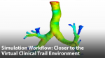 Simulation Workflow Capabilities, One-Step Closer to the Virtual Clinical Trial Environment