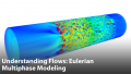 Understanding Gas-Liquid Flows: Eulerian Multiphase Modeling