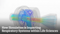 How Simulation is Impacting Respiratory Systems within Life Sciences