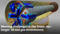 Meeting challenges in the 'lower-for-longer' oil and gas environment