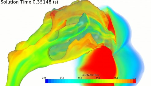 Simulation of Airflow during a Sniff (Bates, Cetto, Doorly, Imperial College)
